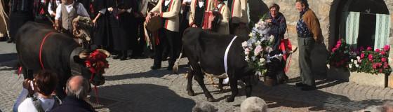 Cogne Valle d'Aosta